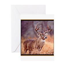 Wildlife Deer Buck Greeting Card