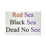 Israel Red Black Dead Seas Rectangle Magnet