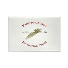 Everglades National Park...Great White Egret Recta