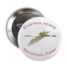 "Everglades National Park...Great White Egret 2.25"""
