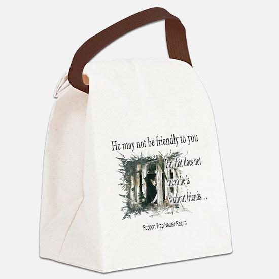 Feral Boy Canvas Lunch Bag
