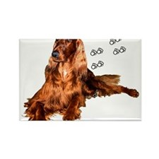 Sunny 02 Rectangle Magnet (10 pack)