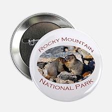 "Rocky Mountain National Park...Marmot Babies 2.25"""