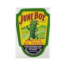 June Boy Pickles Rectangle Magnet