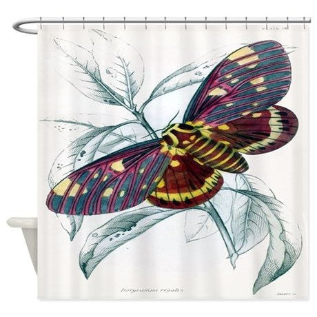 Vintage Butterfly Print #1 Shower Curtain