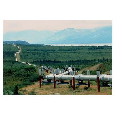 Part of the Trans-Alaskan Oil Pipeline Poster