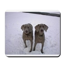 Snow Weims Mousepad