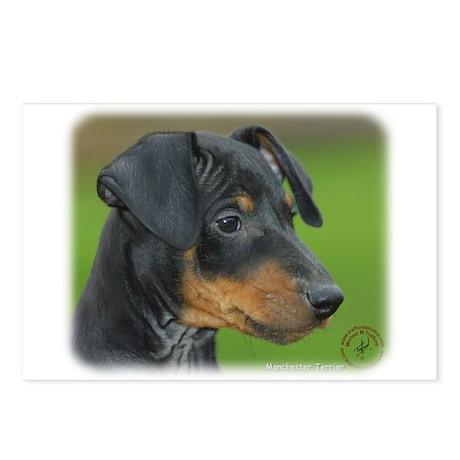 Manchester Terrier 9B085D-07_2 Postcards (Package