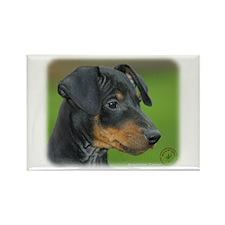 Manchester Terrier 9B085D-07_2 Rectangle Magnet