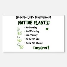 Native Plants for Frontyard Decal