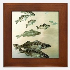 Painting of Fish Framed Tile