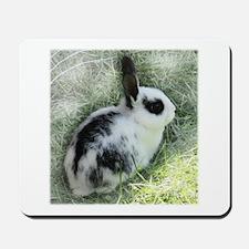 Cute Bunny Mousepad