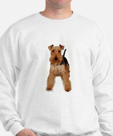 Welsh Terrier portrait Sweatshirt