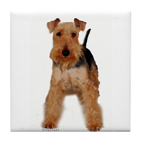 Welsh Terrier portrait Tile Coaster