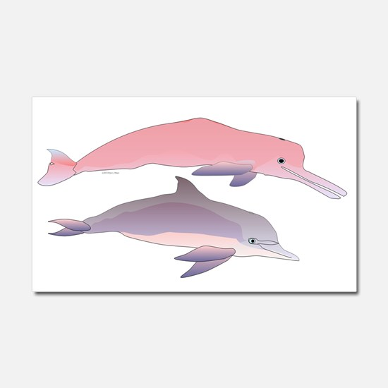Boto and Tucuxi Amazon River Dolphins Car Magnet 2