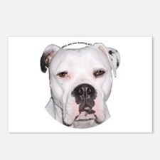 American Bulldog copy.png Postcards (Package of 8)