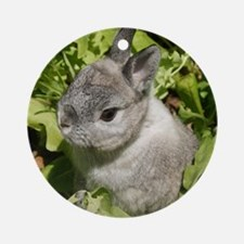 Cute Dwarf Bunny Rabbit round ornament