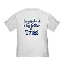 I have a secret-twins-boy Toddler T-Shirt