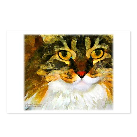 Kitty Close-Up Postcards (Package of 8)