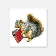 "Squirrel with Book Square Sticker 3"" x 3"""