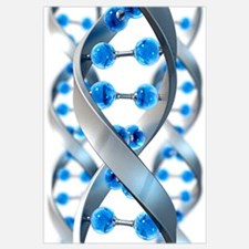 Dna wall art dna wall decor for Genesis decor international pvt ltd