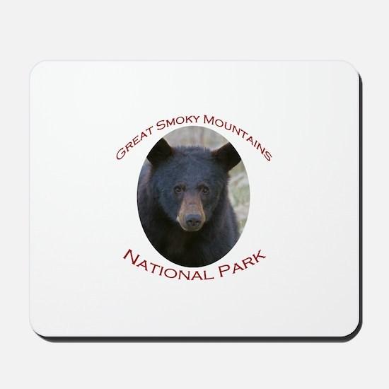 Great Smoky Mountains National Park...Black Bear M