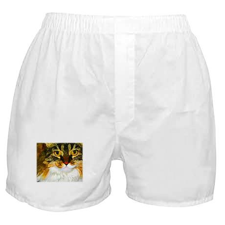 Kitty Close-Up Boxer Shorts