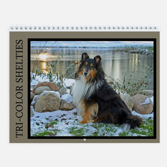 New Tri-Color Sheltie Calendar Wall Calendar