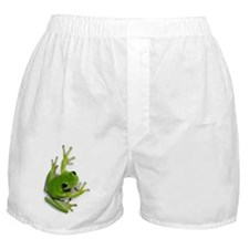 Tree Frog -  Boxer Shorts