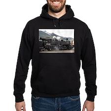 Steam Train: Colorado 2 Hoodie