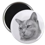 Burmese Cat Magnet