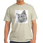 Burmese Cat Ash Grey T-Shirt