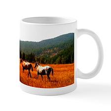 Appaloosas Mug