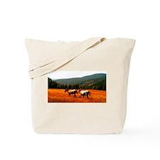 Appaloosas Tote Bag