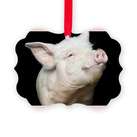 Cutest Pig Picture Ornament
