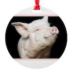 Cutest Pig Round Ornament