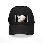 Cutest Pig Black Cap