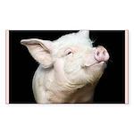 Cutest Pig Sticker (Rectangle 50 pk)