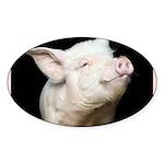 Cutest Pig Sticker (Oval 10 pk)
