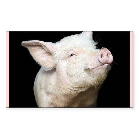 Cutest Pig Sticker (Rectangle)