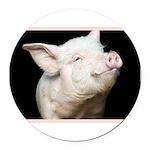 Cutest Pig Round Car Magnet