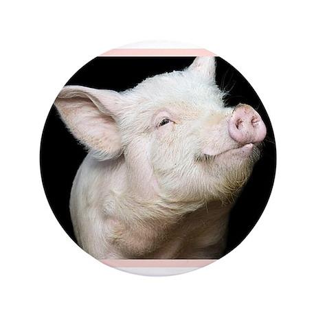 "Cutest Pig 3.5"" Button (100 pack)"