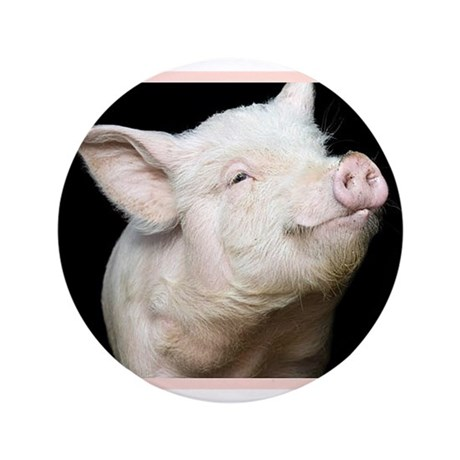 "Cutest Pig 3.5"" Button"