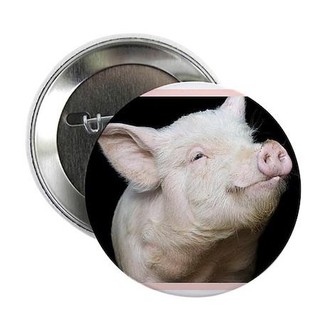 "Cutest Pig 2.25"" Button (10 pack)"