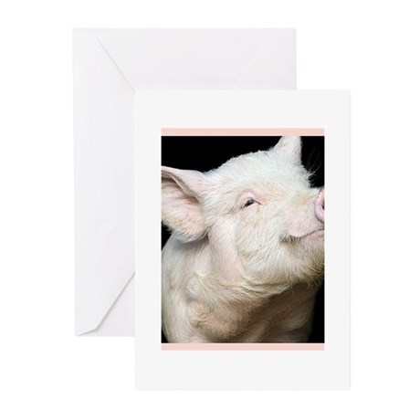 Cutest Pig Greeting Cards (Pk of 10)