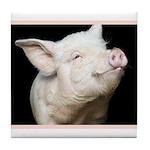 Cutest Pig Tile Coaster