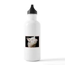 Cutest Pig Water Bottle