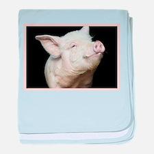 Cutest Pig baby blanket