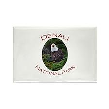 Denali National Park...Eagle Rectangle Magnet