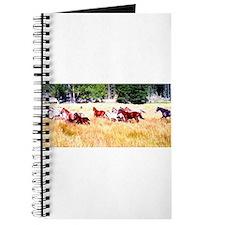 Running Appaloosa Herd Journal
